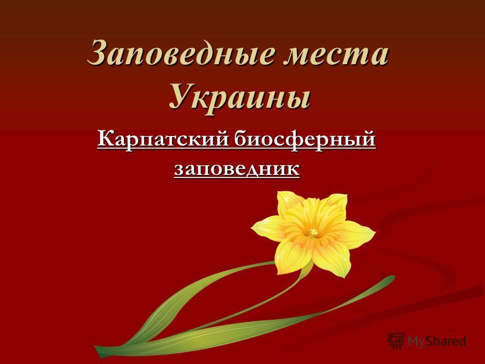 Заповедные места Украины Карпатский биосферный заповедник