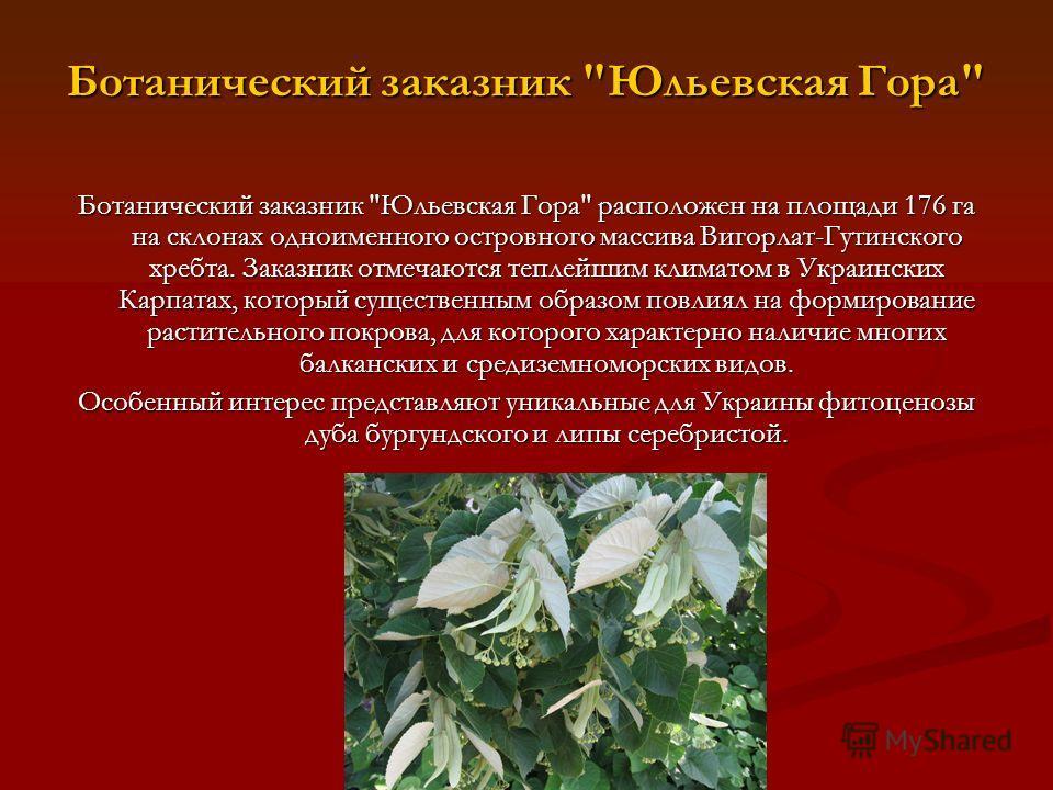 Ботанический заказник