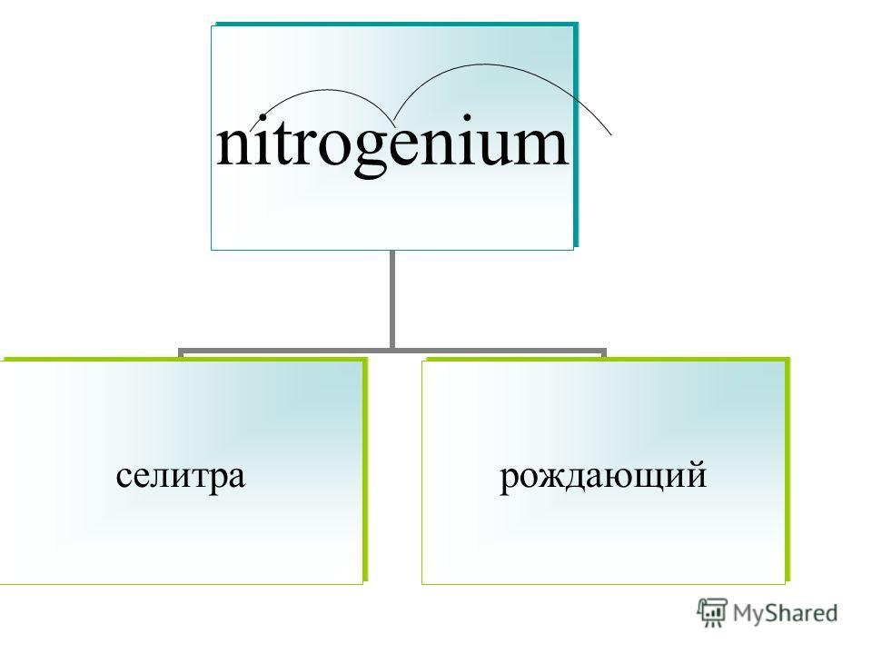 nitrogenium селитрарождающий