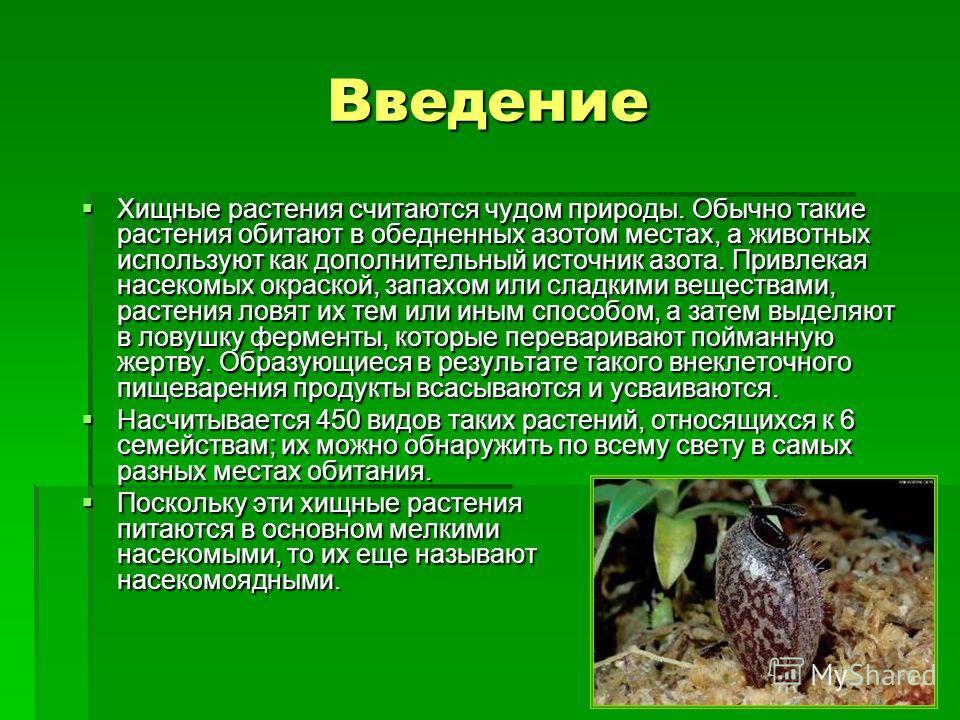 Введение Хищные растения считаются чудом природы. Обычно такие растения обитают в обедненных азотом местах, а животных используют как дополнительный источник азота. Привлекая насекомых окраской, запахом или сладкими веществами, растения ловят их тем