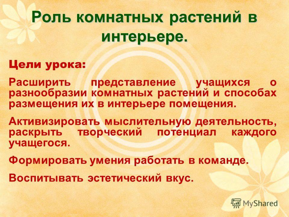 энциклопедия домашних цветов в картинках: