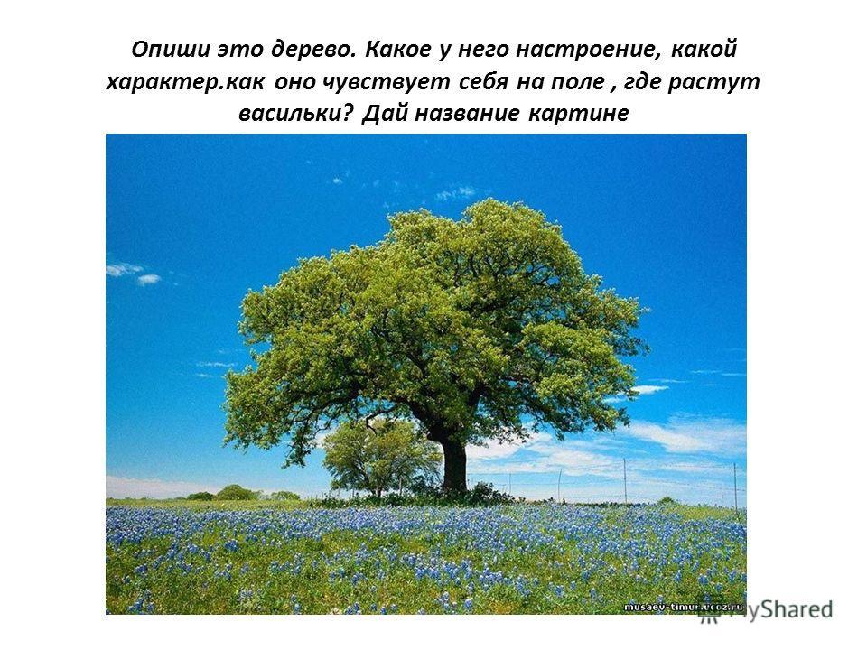 Опиши это дерево. Какое у него настроение, какой характер.как оно чувствует себя на поле, где растут васильки? Дай название картине