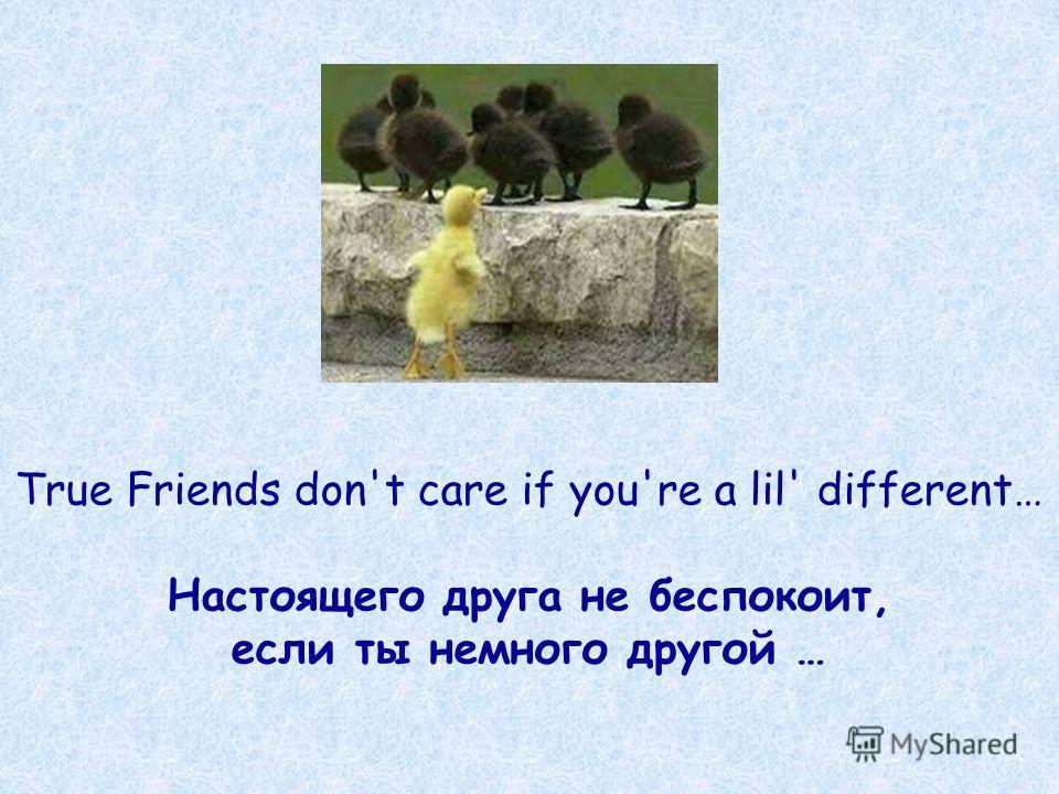 True Friends don't care if you're a lil' different… Настоящего друга не беспокоит, если ты немного другой …