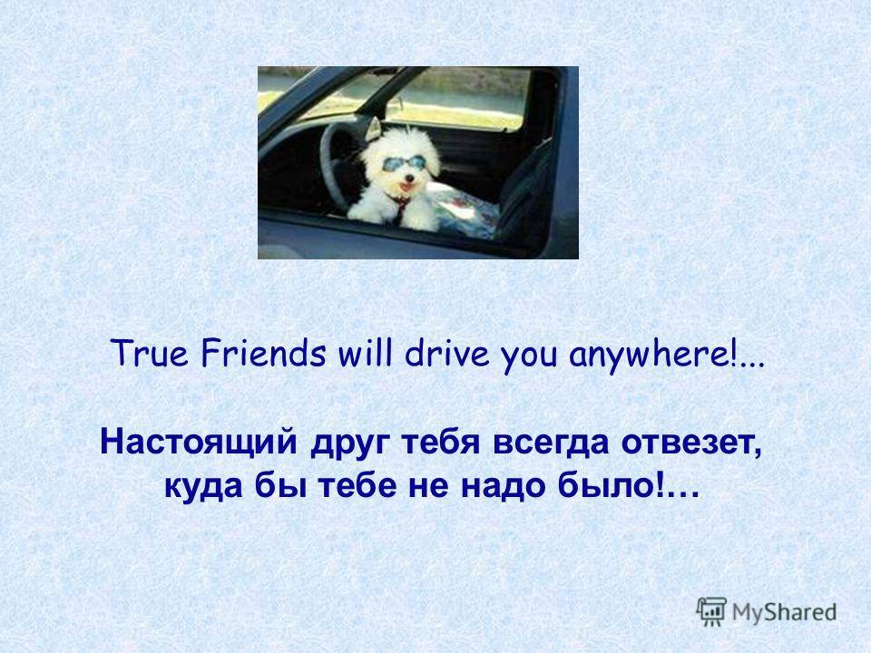 True Friends will drive you anywhere!... Настоящий друг тебя всегда отвезет, куда бы тебе не надо было!…