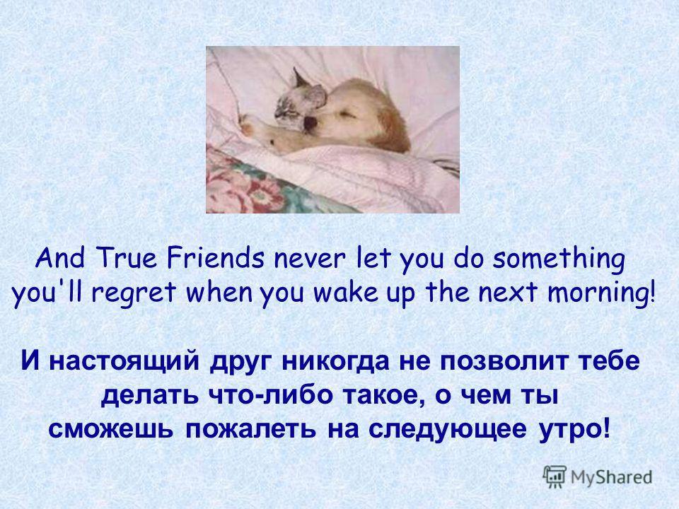 And True Friends never let you do something you'll regret when you wake up the next morning! И настоящий друг никогда не позволит тебе делать что-либо такое, о чем ты сможешь пожалеть на следующее утро!