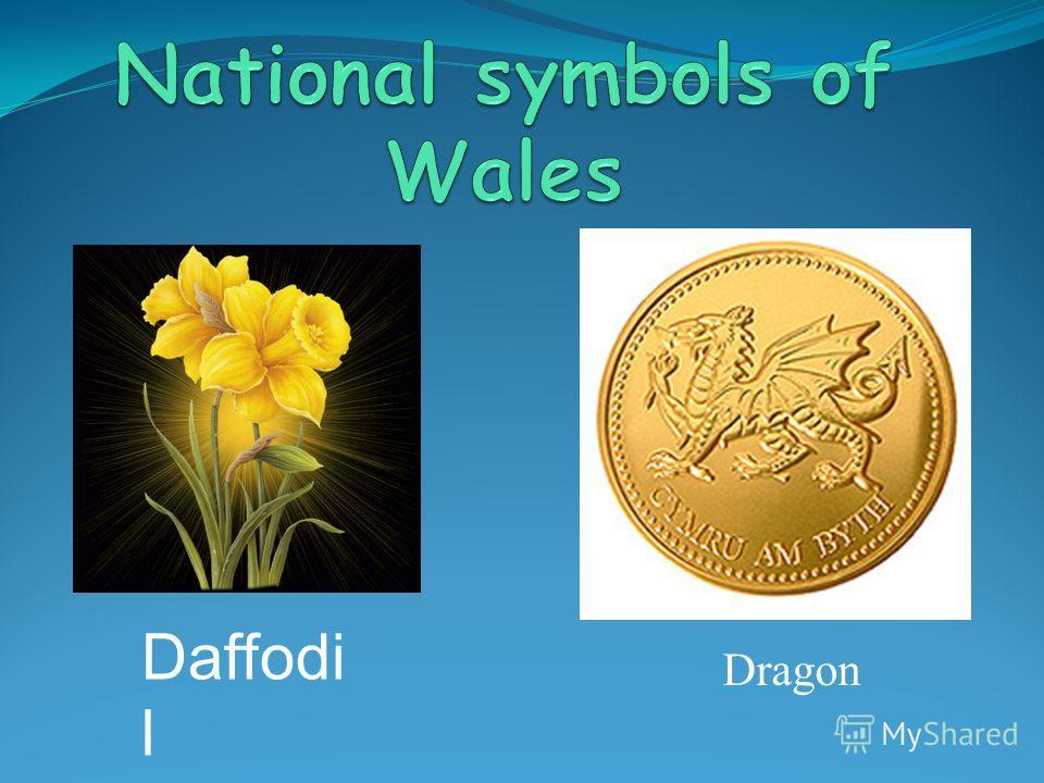 Dragon Daffodi l