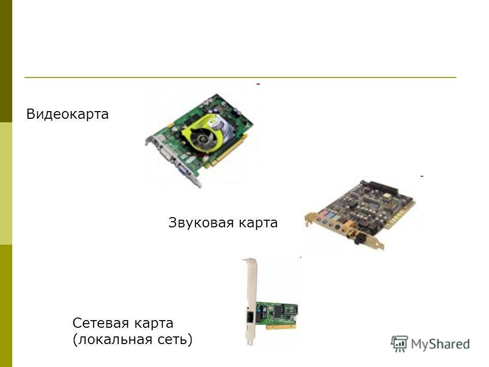 Видеокарта Звуковая карта Сетевая карта (локальная сеть)