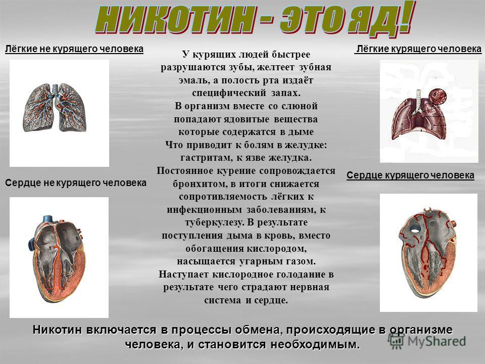 «Курить- не только себе вредить» Мосолов Кирилл, 13 лет «Курить- не только себе вредить» Стыденко Саша, 13 лет