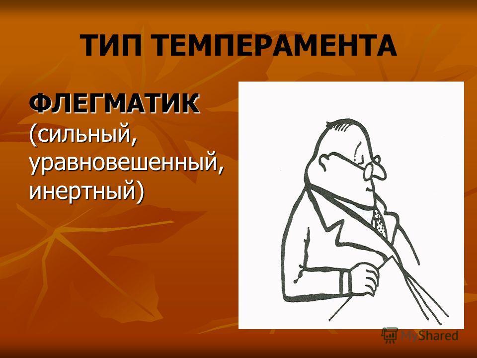 ТИП ТЕМПЕРАМЕНТА ФЛЕГМАТИК (сильный, уравновешенный, инертный)