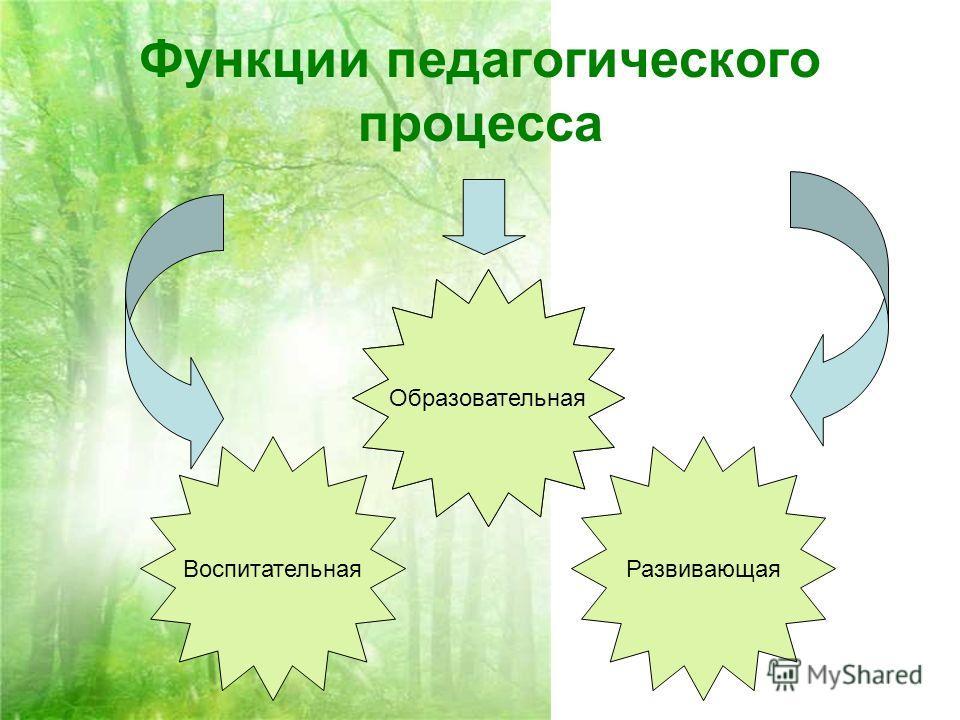 Функции педагогического процесса Воспитательная Образовательная Развивающая Образовательная