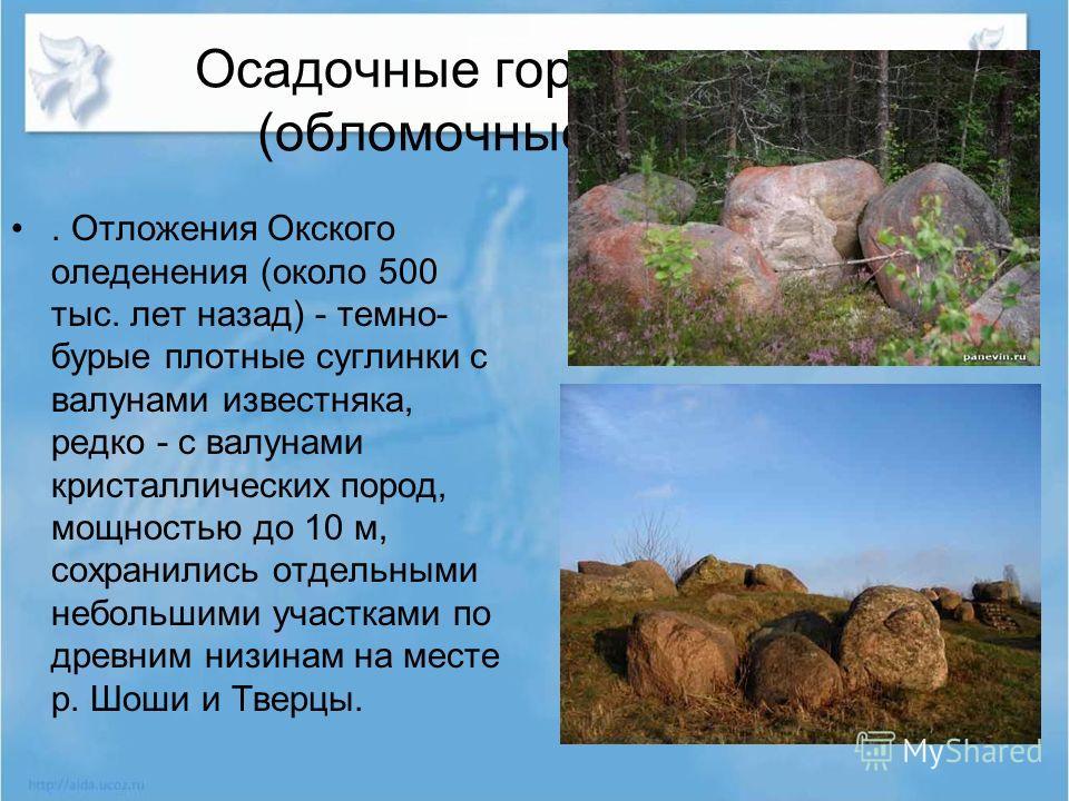 Осадочные горные породы (обломочные) Валуны. Отложения Окского оледенения (около 500 тыс. лет назад) - темно- бурые плотные суглинки с валунами известняка, редко - с валунами кристаллических пород, мощностью до 10 м, сохранились отдельными небольшими