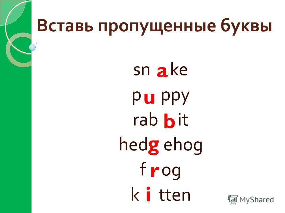 Вставь пропущенные буквы sn ke p ppy rab it hed ehog f og k tten a u b g r i