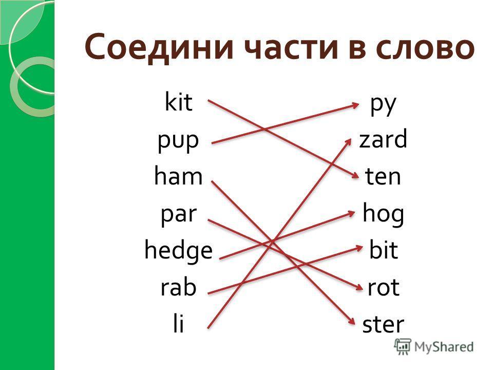 Соедини части в слово kit pup ham par hedge rab li py zard ten hog bit rot ster