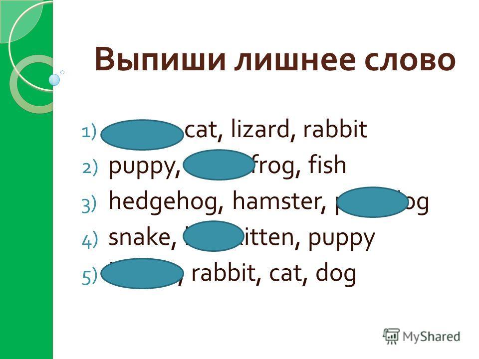Выпиши лишнее слово 1) green, cat, lizard, rabbit 2) puppy, feed, frog, fish 3) hedgehog, hamster, pen, dog 4) snake, big, kitten, puppy 5) brown, rabbit, cat, dog
