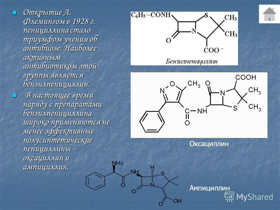 Открытие А. Флемингом в 1928 г. пенициллина стало триумфом учения об антибиозе. Наиболее активным антибиотиком этой группы является бензилпенициллин. Открытие А. Флемингом в 1928 г. пенициллина стало триумфом учения об антибиозе. Наиболее активным ан