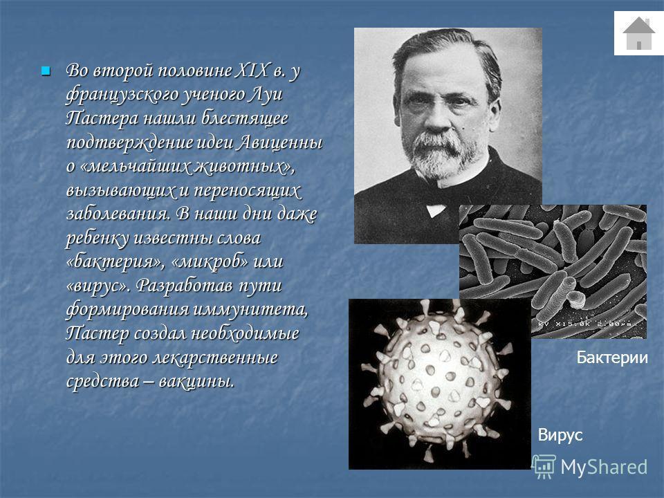 Во второй половине XIX в. у французского ученого Луи Пастера нашли блестящее подтверждение идеи Авиценны о «мельчайших животных», вызывающих и переносящих заболевания. В наши дни даже ребенку известны слова «бактерия», «микроб» или «вирус». Разработа
