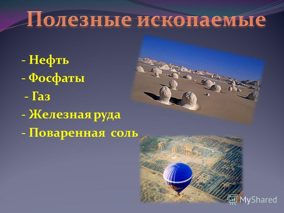 - Нефть - Фосфаты - Газ - Железная руда - Поваренная соль