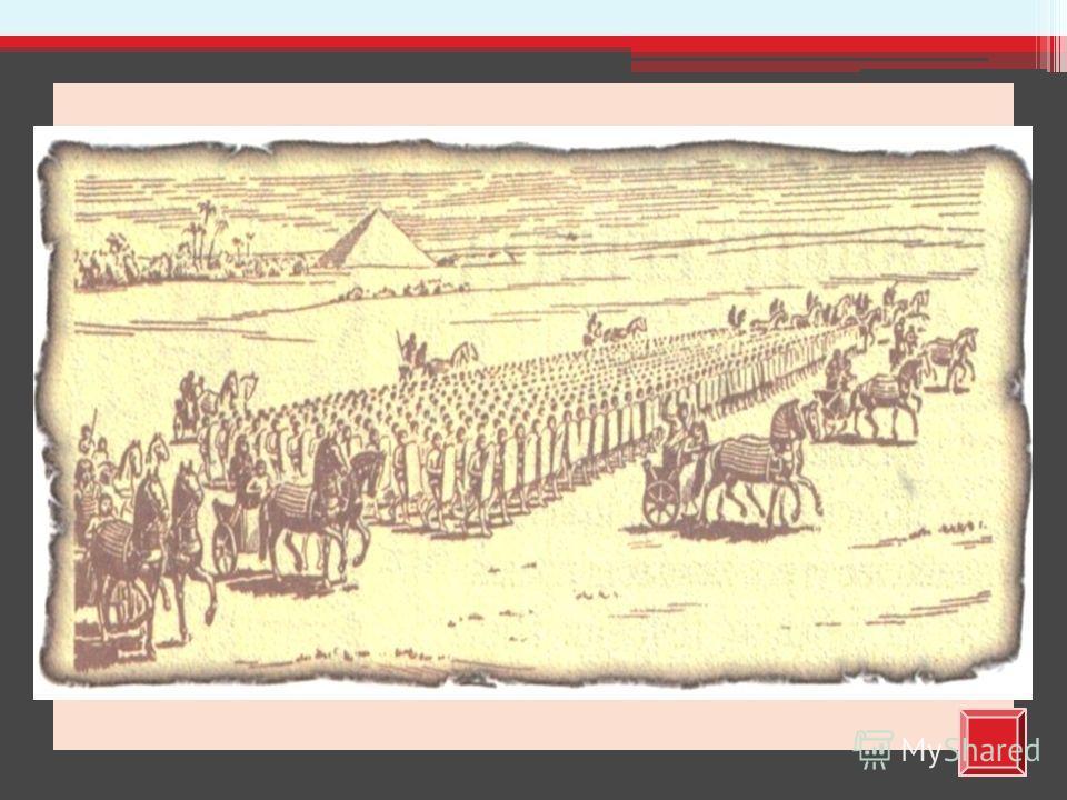 Египетская армия была организована в форме военных поселений. На нижнем течении Нила было много военных поселений, так как здесь можно было ожидать нападений со стороны соседей; в Верхнем Египте военных поселений было меньше, так как эфиопы серьезным