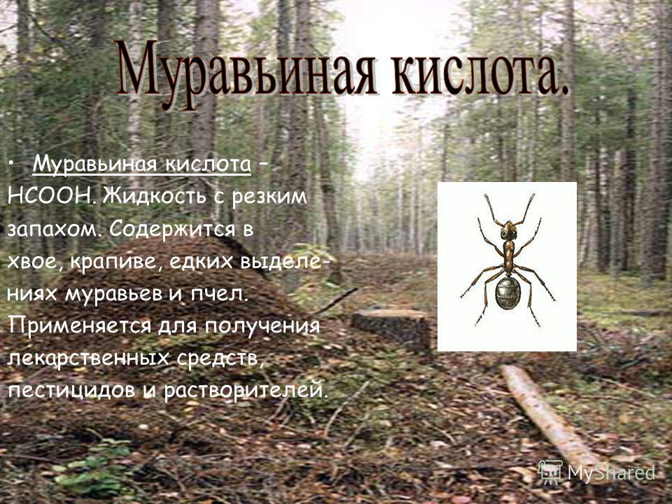 Муравьиная кислота – НСООН. Жидкость с резким запахом. Содержится в хвое, крапиве, едких выделе- ниях муравьев и пчел. Применяется для получения лекарственных средств, пестицидов и растворителей.