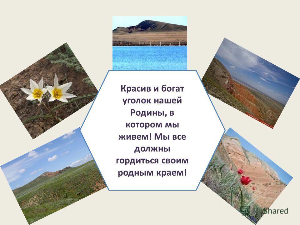 Красив и богат уголок нашей Родины, в котором мы живем! Мы все должны гордиться своим родным краем!