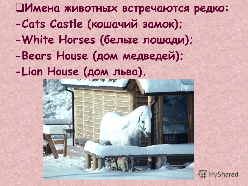 Имена животных встречаются редко: -Cats Castle (кошачий замок); -White Horses (белые лошади); -Bears House (дом медведей); -Lion House (дом льва).