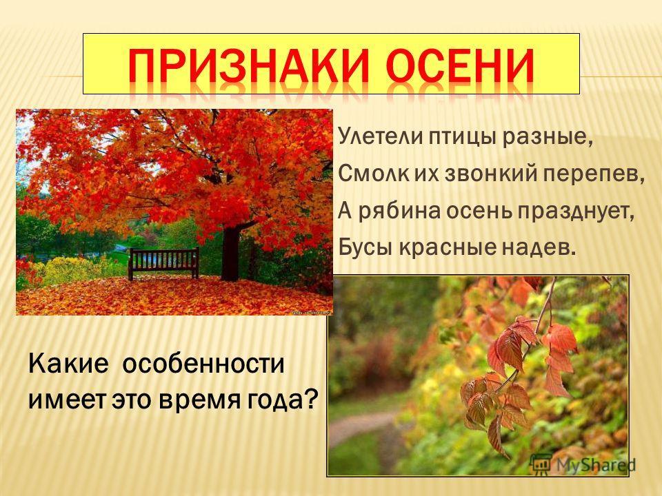 Улетели птицы разные, Смолк их звонкий перепев, А рябина осень празднует, Бусы красные надев. Какие особенности имеет это время года?