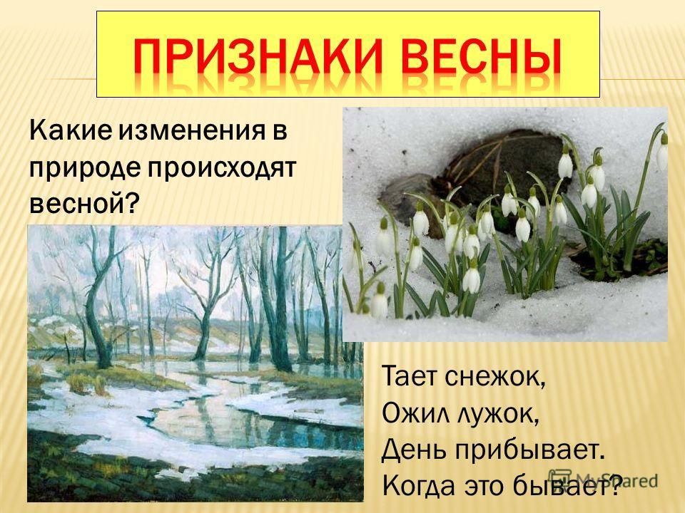 Какие изменения в природе происходят весной? Тает снежок, Ожил лужок, День прибывает. Когда это бывает?