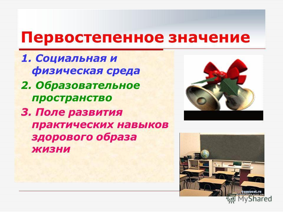 Первостепенное значение 1. Социальная и физическая среда 2. Образовательное пространство 3. Поле развития практических навыков здорового образа жизни