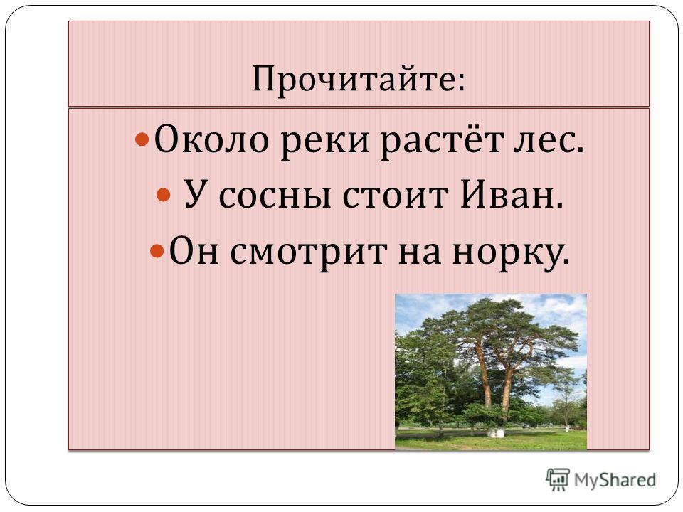 Прочитайте : Около реки растёт лес. У сосны стоит Иван. Он смотрит на норку. Около реки растёт лес. У сосны стоит Иван. Он смотрит на норку.