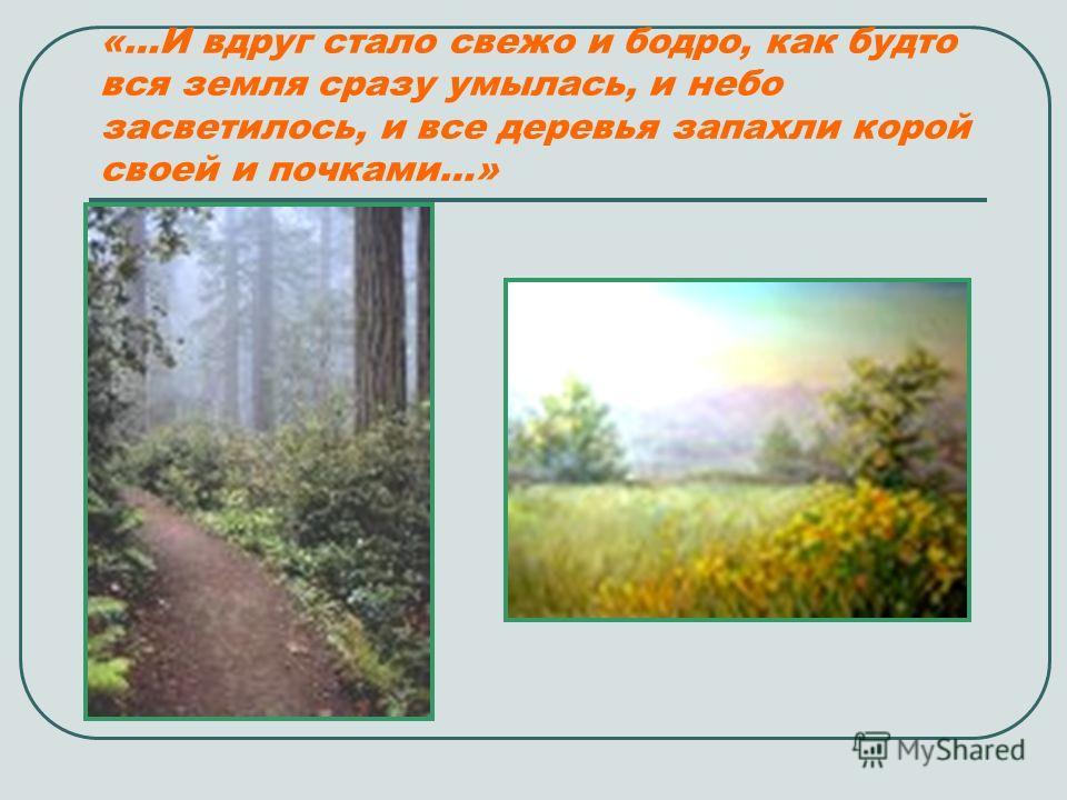 «…И вдруг стало свежо и бодро, как будто вся земля сразу умылась, и небо засветилось, и все деревья запахли корой своей и почками…»