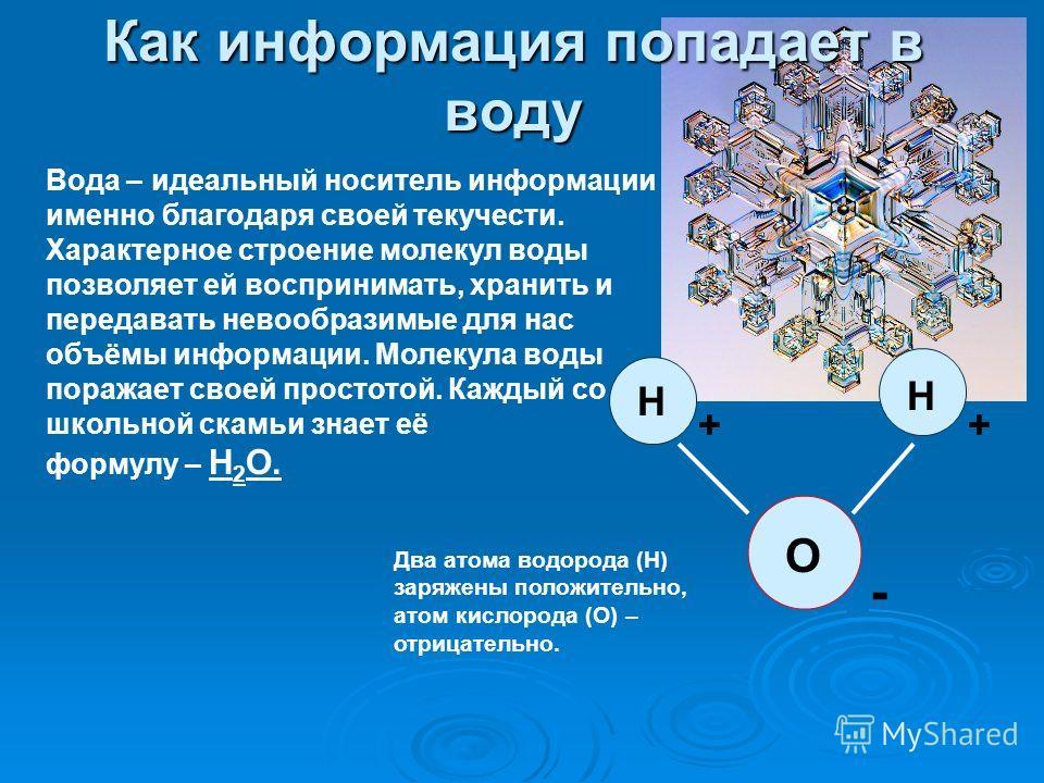 Как информация попадает в воду О Н Н ++ - Вода – идеальный носитель информации именно благодаря своей текучести. Характерное строение молекул воды позволяет ей воспринимать, хранить и передавать невообразимые для нас объёмы информации. Молекула воды