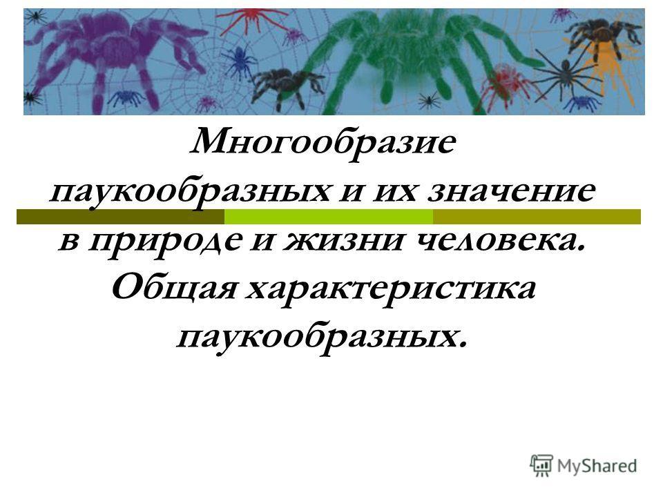 Многообразие паукообразных и их значение в природе и жизни человека. Общая характеристика паукообразных.