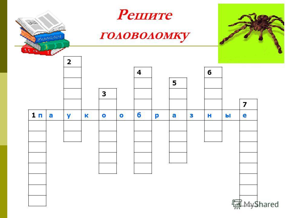 Решите головоломку 2 46 5 3 7 1 паукообразные