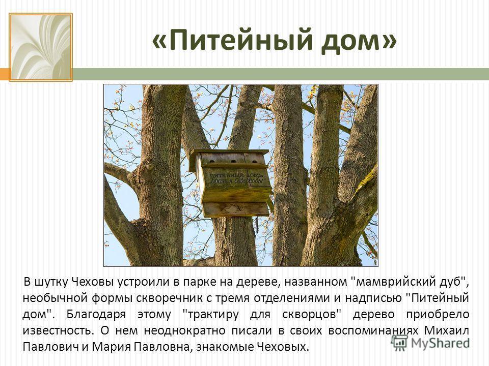 « Питейный дом » В шутку Чеховы устроили в парке на дереве, названном