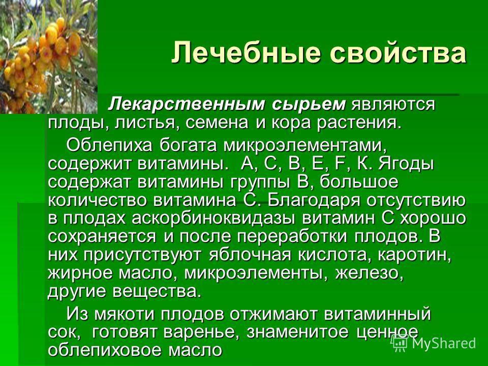 Лечебные свойства Лекарственным сырьем являются плоды, листья, семена и кора растения. Лекарственным сырьем являются плоды, листья, семена и кора растения. Облепиха богата микроэлементами, содержит витамины. А, С, В, Е, F, К. Ягоды содержат витамины