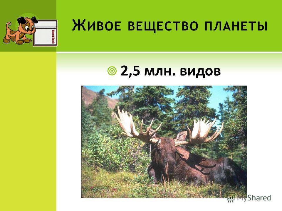 Ж ИВОЕ ВЕЩЕСТВО ПЛАНЕТЫ 2,5 млн. видов