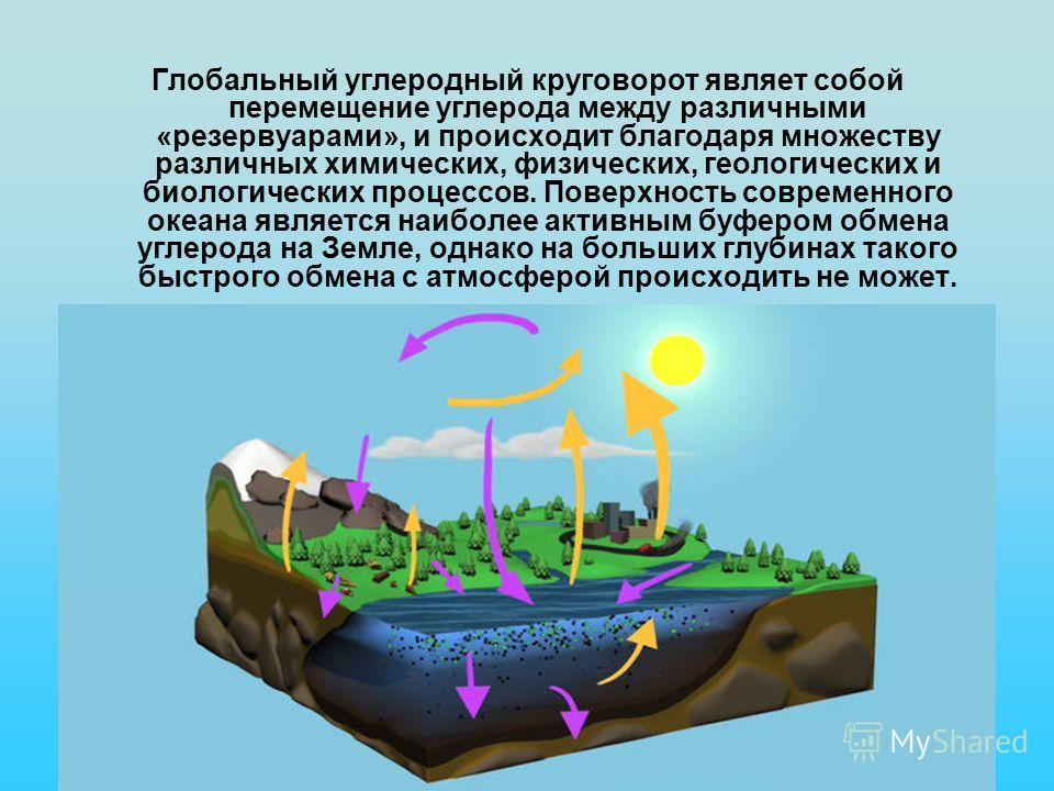 Глобальный углеродный круговорот являет собой перемещение углерода между различными «резервуарами», и происходит благодаря множеству различных химических, физических, геологических и биологических процессов. Поверхность современного океана является н