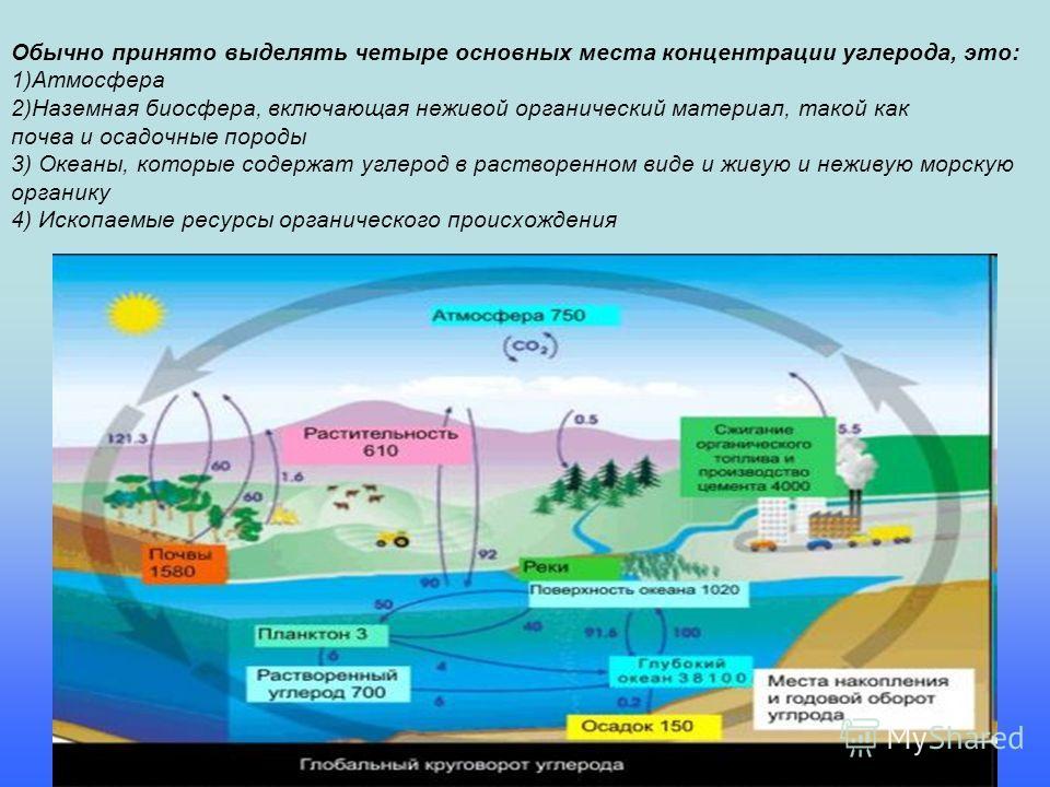 Обычно принято выделять четыре основных места концентрации углерода, это: 1)Атмосфера 2)Наземная биосфера, включающая неживой органический материал, такой как почва и осадочные породы 3) Океаны, которые содержат углерод в растворенном виде и живую и