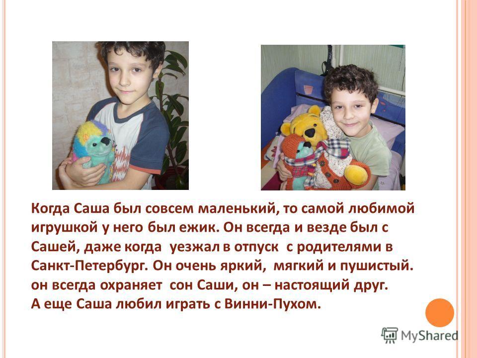 Когда Саша был совсем маленький, то самой любимой игрушкой у него был ежик. Он всегда и везде был с Сашей, даже когда уезжал в отпуск с родителями в Санкт-Петербург. Он очень яркий, мягкий и пушистый. он всегда охраняет сон Саши, он – настоящий друг.