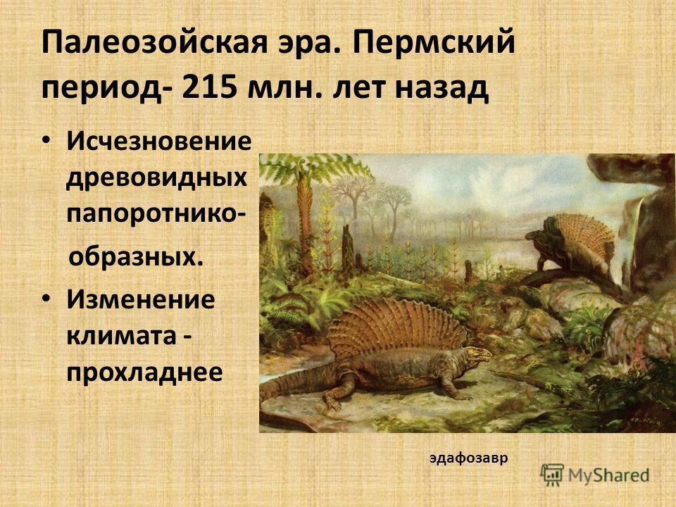 Палеозойская эра. Пермский период- 215 млн. лет назад Исчезновение древовидных папоротнико- образных. Изменение климата - прохладнее эдафозавр