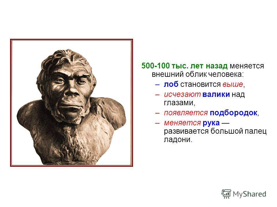 500-100 тыс. лет назад меняется внешний облик человека: –лоб становится выше, –исчезают валики над глазами, –появляется подбородок, –меняется рука развивается большой палец ладони.