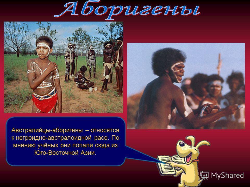 Австралийцы-аборигены – относятся к негроидно-австралоидной расе. По мнению учёных они попали сюда из Юго-Восточной Азии.