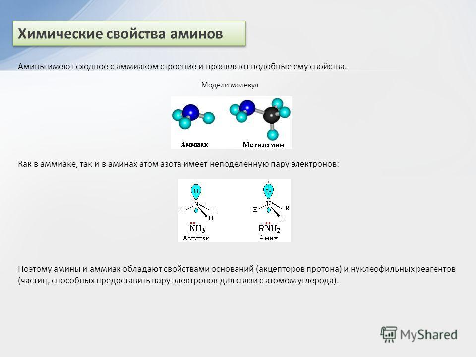 Химические свойства аминов Амины имеют сходное с аммиаком строение и проявляют подобные ему свойства. Модели молекул Как в аммиаке, так и в аминах атом азота имеет неподеленную пару электронов: Поэтому амины и аммиак обладают свойствами оснований (ак