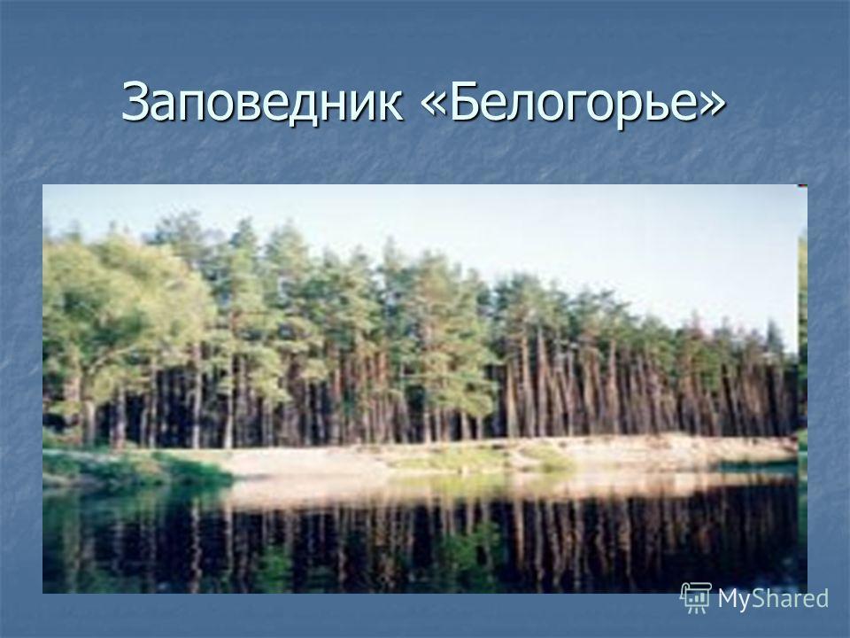 Заповедник «Белогорье»