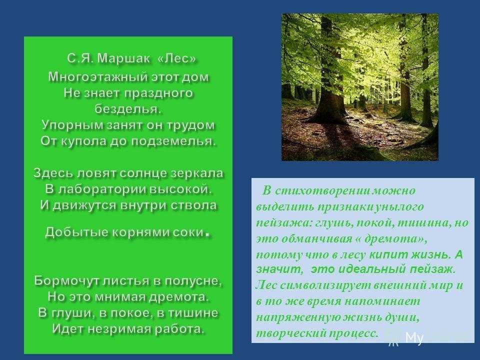 В стихотворении можно выделить признаки унылого пейзажа: глушь, покой, тишина, но это обманчивая « дремота», потому что в лесу кипит жизнь. А значит, это идеальный пейзаж. Лес символизирует внешний мир и в то же время напоминает напряженную жизнь душ