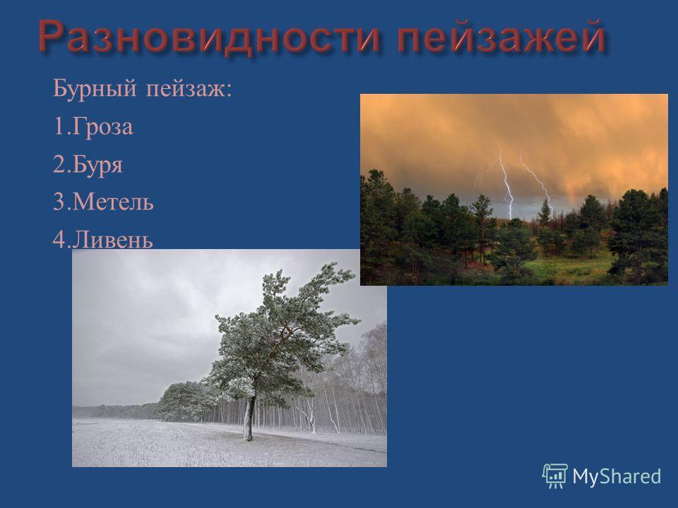 Бурный пейзаж : 1. Гроза 2. Буря 3. Метель 4. Ливень