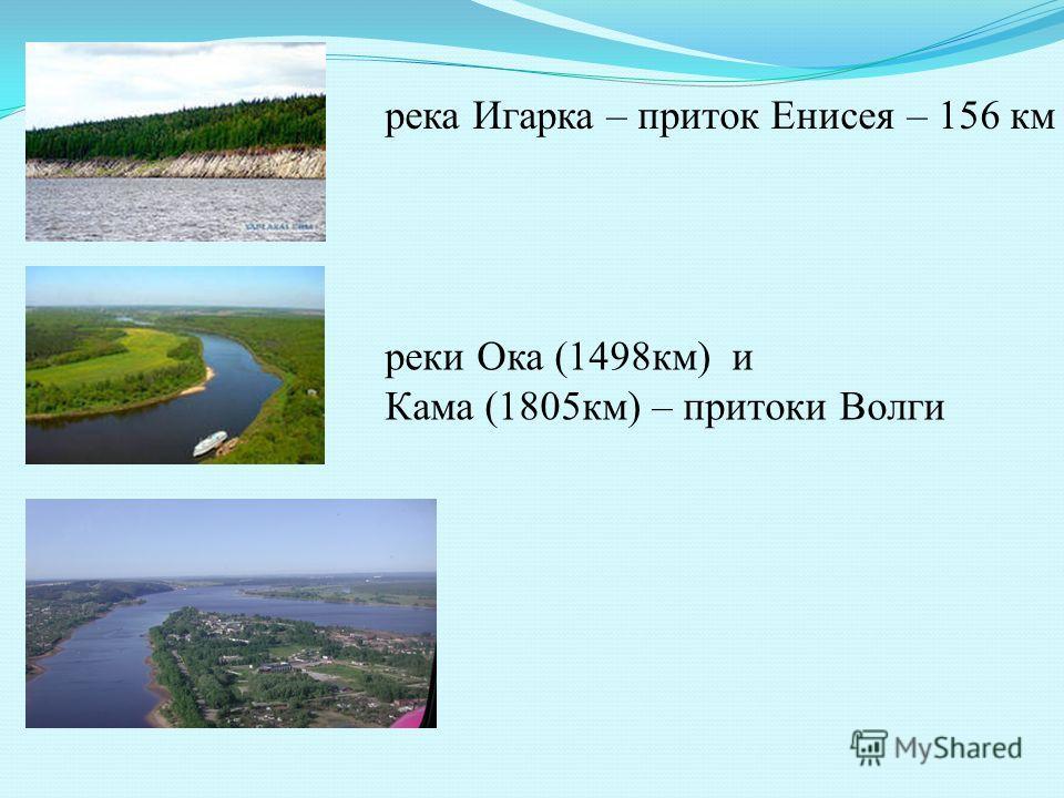 река Игарка – приток Енисея – 156 км реки Ока (1498км) и Кама (1805км) – притоки Волги