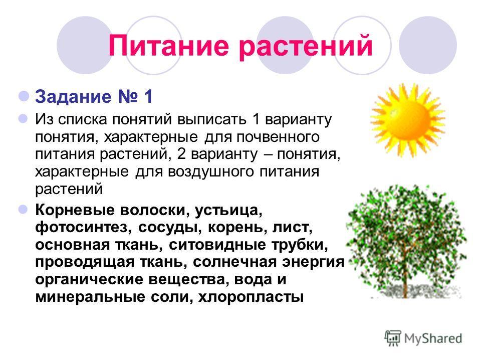 Питание растений Задание 1 Из списка понятий выписать 1 варианту понятия, характерные для почвенного питания растений, 2 варианту – понятия, характерные для воздушного питания растений Корневые волоски, устьица, фотосинтез, сосуды, корень, лист, осно