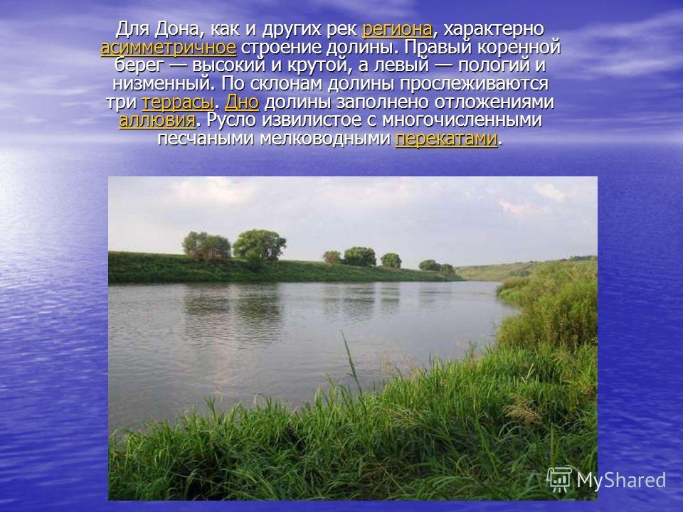 Для Дона, как и других рек региона, характерно асимметричное строение долины. Правый коренной берег высокий и крутой, а левый пологий и низменный. По склонам долины прослеживаются три террасы. Дно долины заполнено отложениями аллювия. Русло извилисто