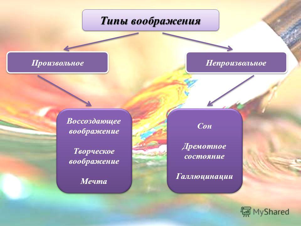 Типы воображения Сон Дремотное состояние Галлюцинации Сон Дремотное состояние Галлюцинации Воссоздающее воображение Творческое воображение Мечта Воссоздающее воображение Творческое воображение Мечта Непроизвольное Произвольное